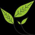 Sostenibilita-SavingCO2